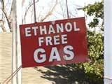 Test gasoline at pump to confirm it is ethanol-free (without alcohol).